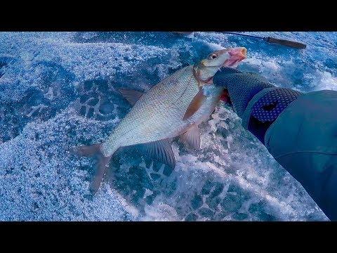 Чертик | Вот и первая зимняя рыбалка 2018 !Нам не страшен мороз трескучий!