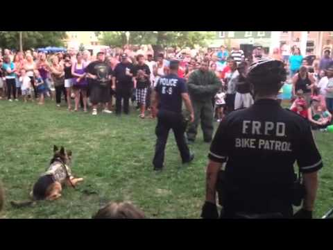 K-9 Protects Police Officer watch the dogs reaction