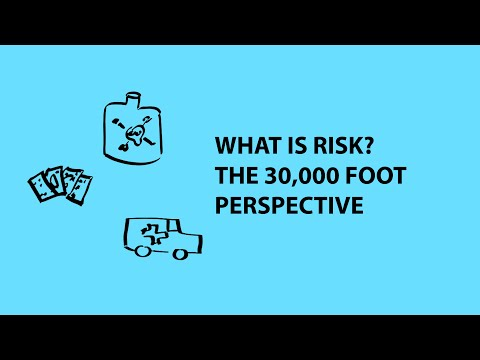 What is Risk?  The 30,000 foot perspective