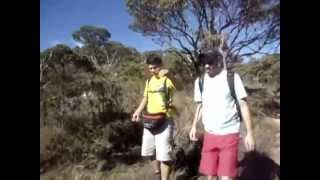 Watch Audioslave Explorer video
