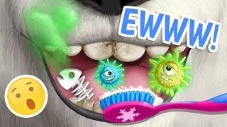 Baby Bear Chloe's Winter Routine! Christmas Animal Hair Salon 2   TutoTOONS Cartoons & Kids Games