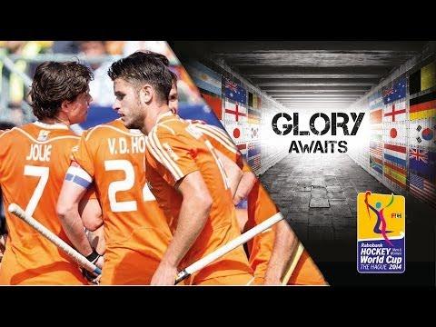 Netherlands vs Argentina - Men's Rabobank Hockey World Cup 2014 Hague Pool B [01/6/2014]