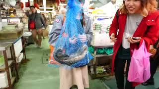 Thức ăn đường phố Nhật Bản - độc hại rắn biển - Thế giới quanh ta