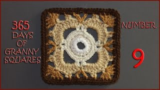 365 Days of Granny Squares Number 9