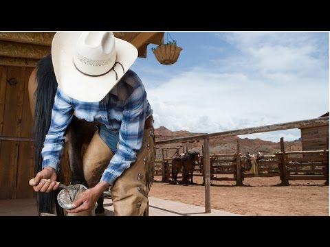 Clique e veja o vídeo Curso Aparação de Cascos, Correção de Aprumos e Ferrageamento de Cavalos - Anatomia do Pé