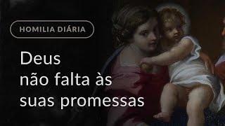 Deus não falta às suas promessas (Homilia Diária.1032: Segunda-feira da 3.ª Semana do Advento)