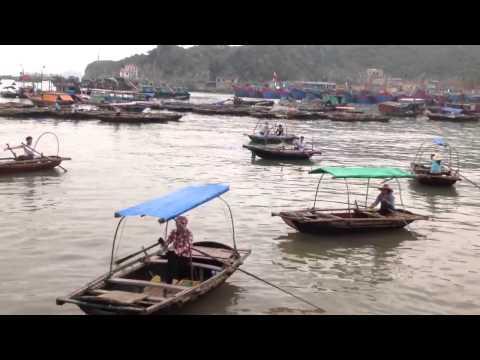 Cuộc sống hàng ngày của ngư dân Cát Bà