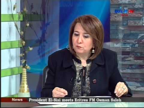 Interview on Syria, ME issues (English) Nile TV, The Daily Debate 15 2 2016
