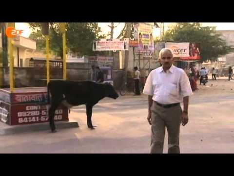 Auslandsjournal ZDF Indien Bevölkerungswachstum Sterilisation Fließband 2012