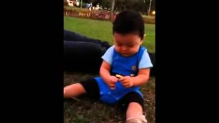 Gavin Eat Grass Lol.. - Team Kramer