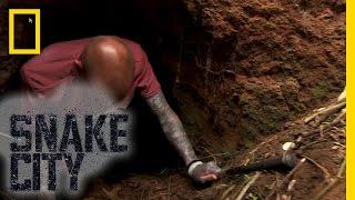 Python Death Crawl   Snake City