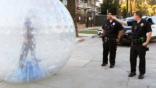 GIANT ZORB BALL vs. HOLLYWOOD