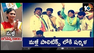 YS Sharmila Re-Entry into Politics  News
