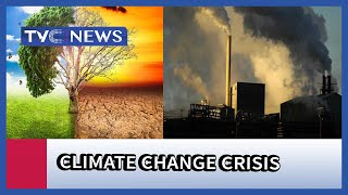 Harjeet Singh reviews Climate Change Conference