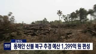 투/동해안 산불 복구 추경 예산 1,399억 원 편성