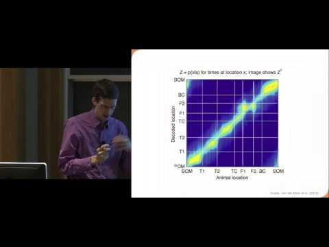 Cognitive Neuroscience at Dartmouth -  Spike timing, sequences, and model-based prediction