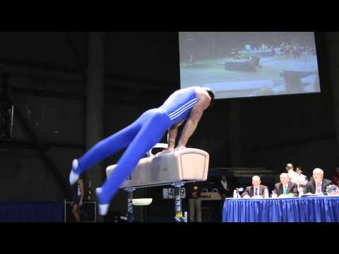 Brandon Wynn - Pommel Horse - 2012 Winter Cup Finals