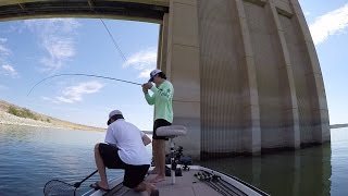 download lagu Fishing Carolina Rigs In Deep Water gratis