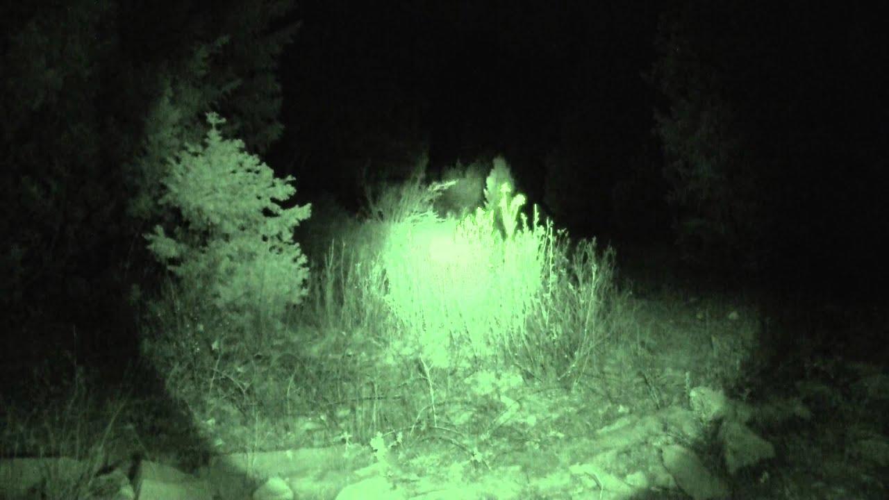 Navajo Skinwalker Sightings Rough Hollow post log ...