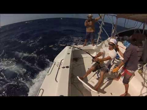 Ramajay - Grenada Billfish Tournament 2014