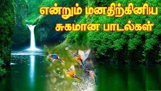 Vol5 MP3Evergreen Tamil SongsIllayaraja Melody