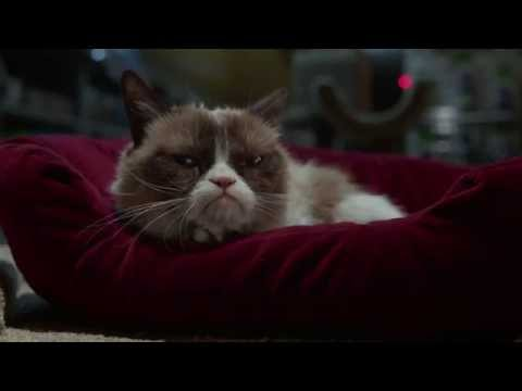 Grumpy Cat's Worst Christmas Ever Trailer Commentary