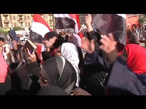 Sex attacks against women in Tahrir Square alarm rights groups