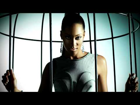 Shontelle - Perfect Nightmare (New Single + Lyrics) Video