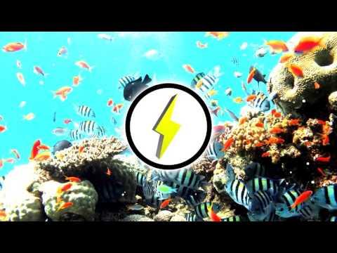 Ariane Grande - Into You (Pnut & Jelly Remix)