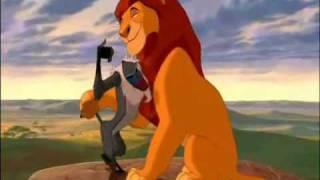 O Ciclo da Vida - O Rei Leão