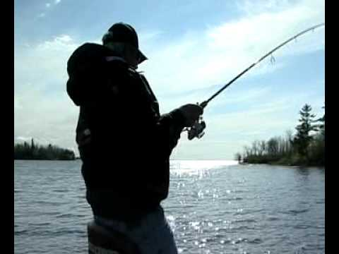 Simply Fishing Tip: Shoal Lake Lodge Smallies