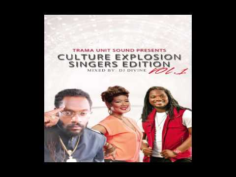 Culture Reggae Mix: Chronixx, Jah Cure, Alaine, Christopher Martin, Busy Signal & More video