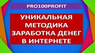 PRO100Profit Уникальная методика заработка денег в интернет
