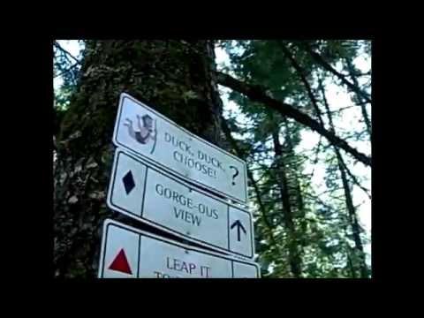 """Kemp Family """"Tree-to-Tree"""" Vacation Adventure"""
