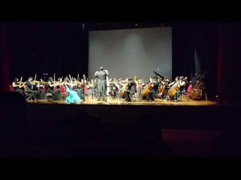 Ayam Den Lapeh by String Orchestra of Surabaya