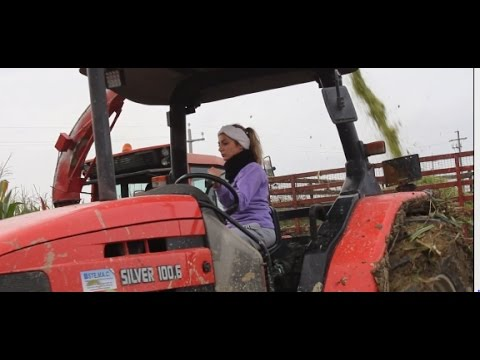 Az. Agr. Rosati in Insilato Mais 2016 [Extreme Silage in the Mud]