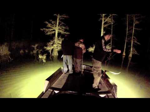 Bowfishing at Night Under The