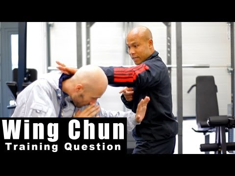 Wing Chun Techniques - Does wing chun use only one hand to defend? Q4 Image 1