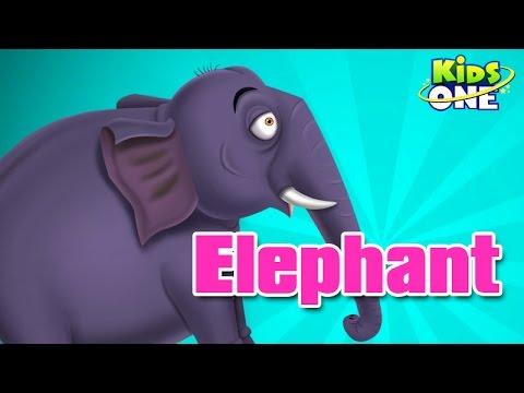 Elephant || Nursery Rhyme video
