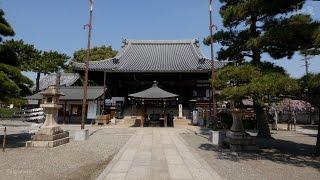 旅の星 Tabinohoshi 「藤井寺まち旅」 Fujiidera, Japan vol.27