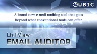 "Play the video of ""Lit i View EMAIL AUDITOR"""