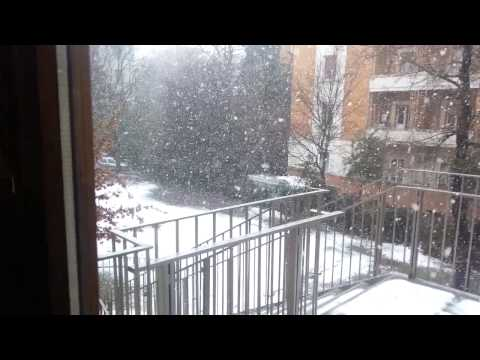 Neve bologna 12:00 17/1/2012