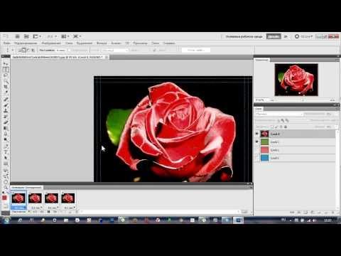 Как сделать эффект анимации на фото