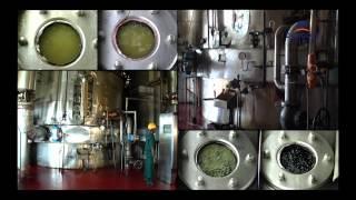 Dangote - Sugar Refining