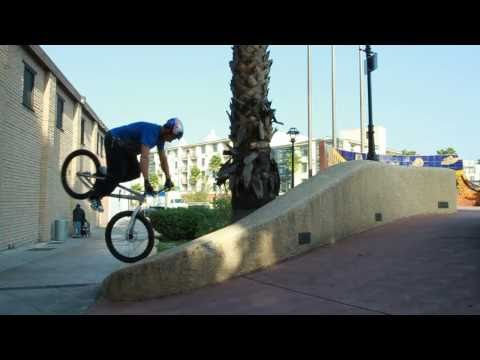Kenny Belaey: Los Angeles on a 24""