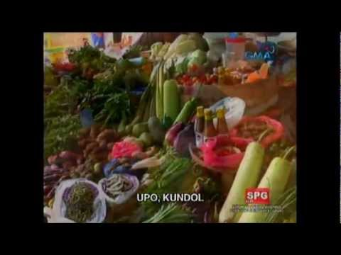Nutrition Jingle Of Nd3-01 Sy.2012 Pwu video