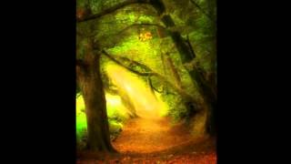 Atmospheric Video Game Music (Woods) - Forest of Fairytales -