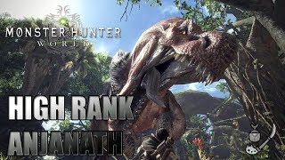 [Monster Hunter: World] High Rank Anjanath Hunt (Insect Glaive Solo)