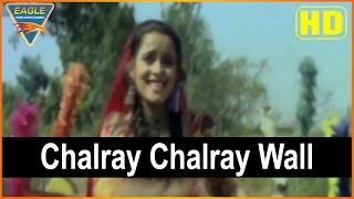 Basanti Tangewali Hindi Movie || Chalray Chalray Wall Video Song चलराय चलराय वाल || Ekta Sohini || E