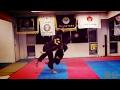 Hapkido VS Taekwondo